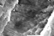 Figure 3: Real world fatigue striation in stainless steel.